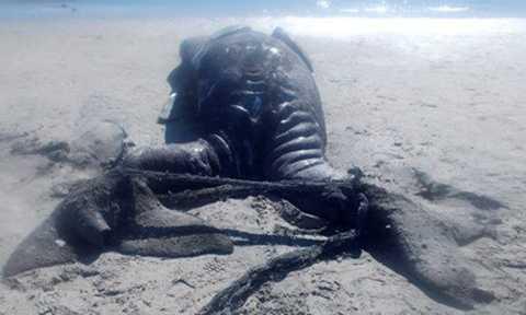 Theo ghi nhận, trường hợp cá voi xám sinh đôi dính liền ở được phát hiện ở Mexico là trường hợp đầu tiên trên thế giới.