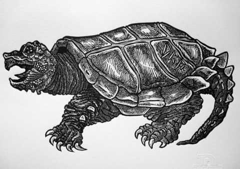 10. Quái vật Oscar, đây là một   con quái vật có hình dáng giống như rùa cá sấu khổng lồ, vành mai và   sống đuôi của con quái vật này đầy gai nhọn, có thể dễ dàng quật ngã,   đâm chết người. Kinh khủng hơn, Oscar có mỏ quặp, sắc nhọn cùng với bộ   móng không khác gì dao găm sẵn sàng xé xác con mồi mà nó nhắm.