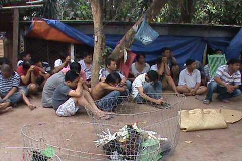 Công an Tiền Giang vừa triệt phá một trường gà 'khủng' thu giữ hàng trăm triệu đồng (ảnh minh họa)