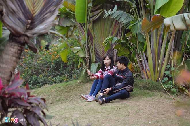 Nếu bạn trẻ nào nhớ xóm làng, có thể chọn bờ tre, bụi chuối ngồi nghỉ để cảm nhận không khí quê nhà.