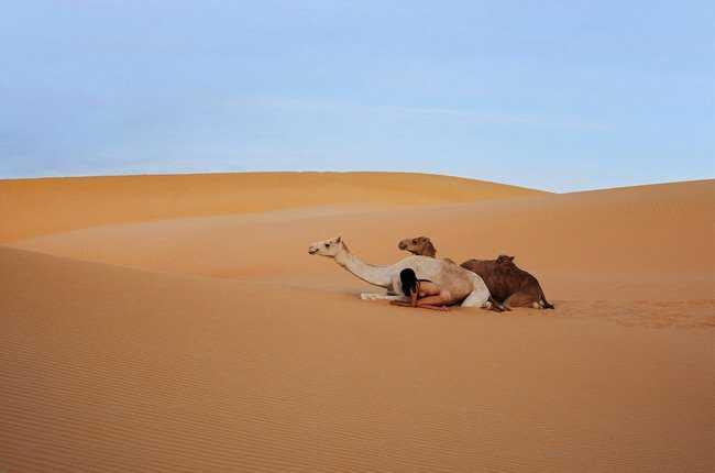 Không chỉ nude cùng heo, Miru còn chụp hình khỏa thân với lạc đà.