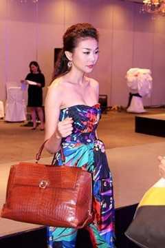 Thanh Hằng từng gây sốc khi mang túi xách da ca sấu của thương hiệu Salvatore Ferragamo, chiếc túi này của người đẹp có giá lên đến 700 triệu đồng.