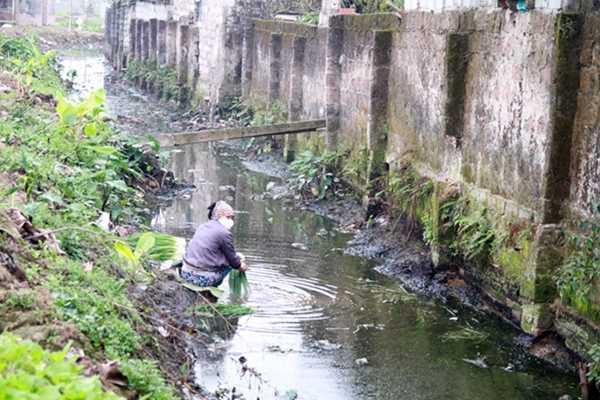 Hình ảnh người phụ nữ bịt kín khẩu trang rửa rau ở nguồn nước thải phân gia súc, nước thải sinh hoạt.
