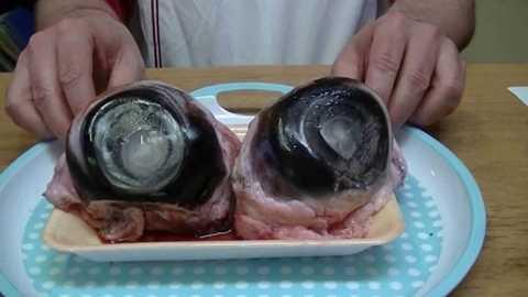 Nhãn cầu cá ngừ. Đây có lẽ là một món ăn khiến không ít người ghê sợ khi nhìn thấy. Bạn có thể dễ dàng tìm thấy nhãn cầu cá ngừ được bán tại các nhà hàng ở Trung Quốc và Nhật Bản. Món ăn ghê rợn này được chế biến bằng cách luộc nhãn cầu cá ngừ và nêm nếm gia vị cho đủ ăn. Đây được xem là món ăn có nhiều chất bổ dưỡng.