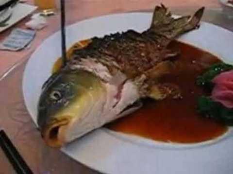 Cá Ying-Yang. Trung Quốc. Đây là một trong những món ăn kỳ dị nhất thế giới khi nó là món cá nửa sống nửa chín. Người đầu bếp phải thực sự lành nghề để chế biến sao cho phần thân và đuôi con cá được chiên vàng ruộm trong khi phần đầu cá vẫn còn sống. Thực khách sẽ vẫn thấy con cá thở thoi thóp khi thưởng thức.