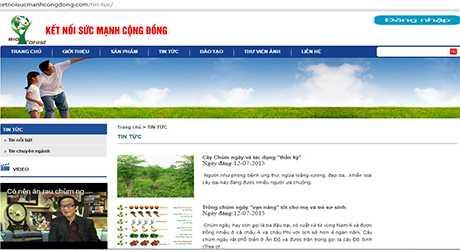 Website của Big Forest Việt Nam. Ảnh chụp màn hình ngày 16/3.