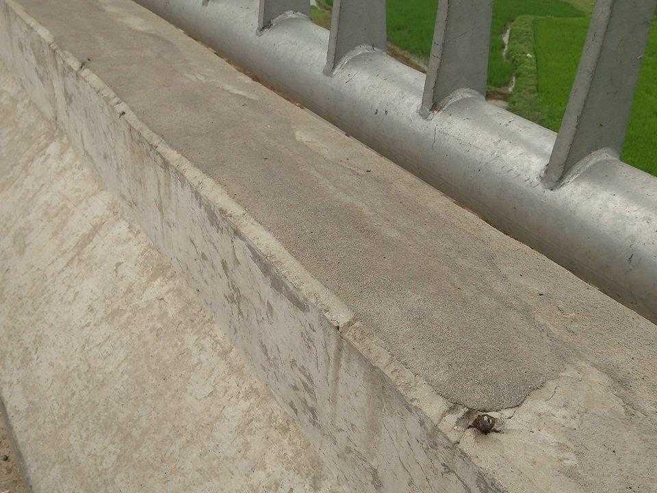 Sau Tết, một số chỗ nứt đã được phủ một lớp mặt bằng xi măng để