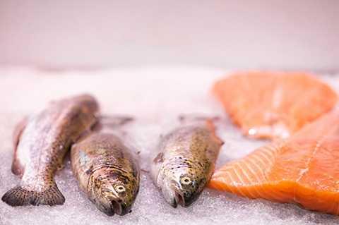 Các hóa chất độc hại đã giết chết số lượng lớn cá hồi. Ảnh The Sun