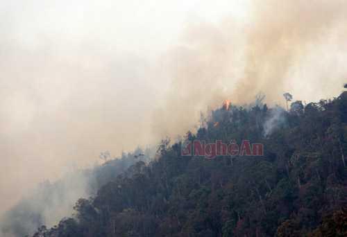 Một điểm cháy trên khu vực núi cheo leo, khó tiếp cận