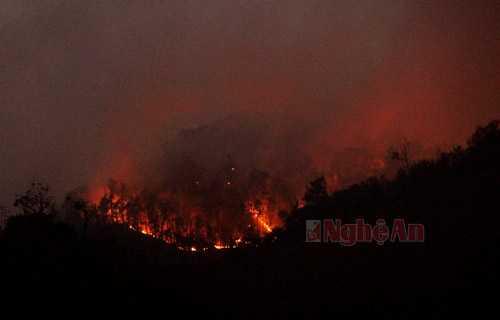 Hiện ngọn lửa đã tách thành 3 nhánh đi theo hướng Tây Bắc sang Đông Nam, cách trung tâm UBND xã Na Ngoi gần 10 Km.