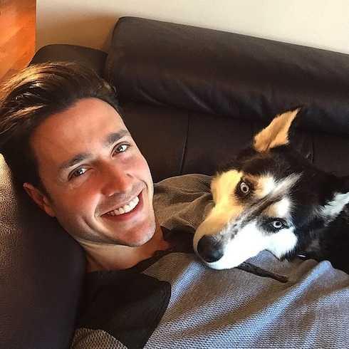 Mike là một người rất yêu chó.