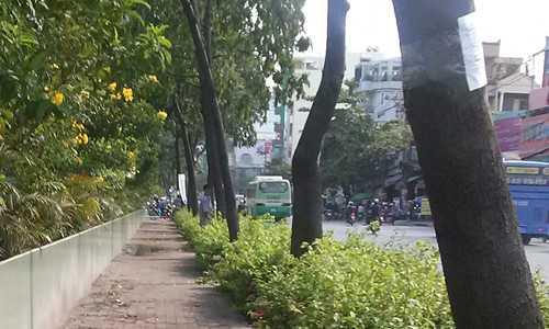 Người đàn ông quay mặt thẳng ra đường Đinh Bộ Lĩnh tiểu tiện không một chút ái ngại
