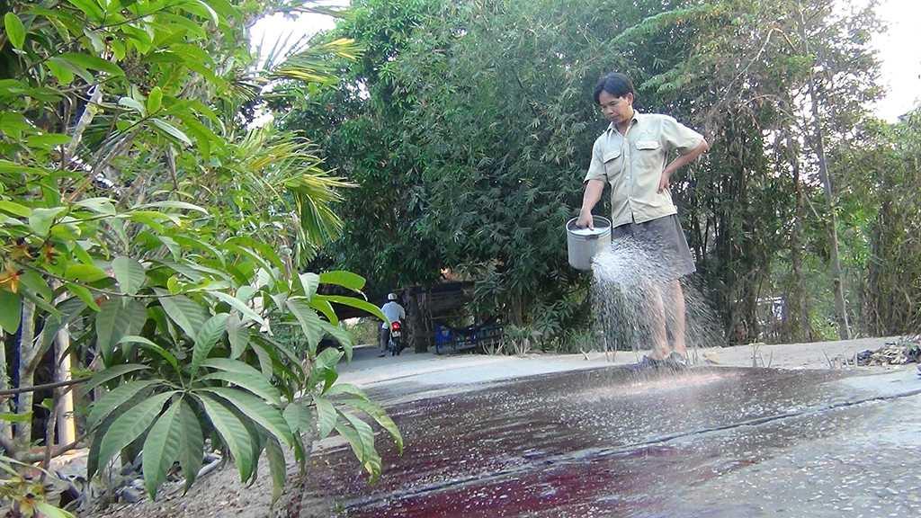 Người dân liên tục tưới lộ để tẩy rửa hóa chất - Ảnh: Ngọc Tài