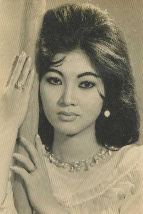 Nghệ sĩ Thẩm Thúy Hằng sinh năm 1941, quê gốc Hải Phòng nhưng lớn lên tại An Giang. Bà có nhan sắc trời phú, từ thuở đi học đã được gọi là hoa khôi. Năm 16 tuổi, bà chính thức đến với điện ảnh. Bà sớmtrở thành ngôi sao với vai diễn trong phim 'Người đẹp Bình Dương'. Thẩm Thúy Hằngđược đánh giá là mỹ nhân đẹp ở mọi góc nhìn và là biểu tượng nhan sắc Sài Gòn suốt thời gian dài. Danh tiếng Thẩm Thúy Hằng lan rộng ở khắp các nước châu Á trong giai đoạn cuối thập niên 1950 đến cuối những năm 1970 củathế kỷ 20. Sau khi trải qua nhiều biến cố trong cuộc sống, nhất là nhan sắc không còn như xưa vì hậu quả của phẫu thuật thẩm mỹ, Thẩm Thúy Hằng quyết định 'ở ẩn'.