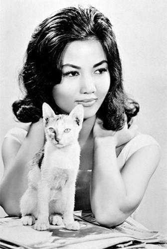 Nghệ sĩ Kiều Chinh sinh năm 1937 ở Hà Nội nhưng trưởng thành ở Sài Gòn. Bà là một trong những diễn viên nổi tiếng của miền Nam trước năm 1975 và từng đóng một số phim của Hollywood. Bà có vẻ đẹp sắc sảo, cuốn hút. Hiện tại, nghệ sĩ Kiều Chinh sống ở hải ngoại, vẫn thường xuất hiện tại các sự kiện điện ảnh của cộng đồng người Việt.