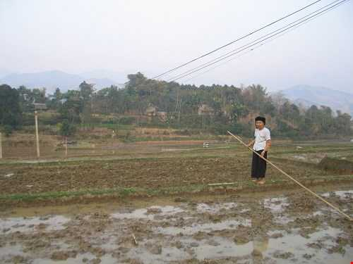 """Bà Dương Thị Liệc, trú ở thôn Trạc, đang men theo bờ ruộng đi đến """"mỏm đá ma"""" mà người trong vùng sợ hãi."""