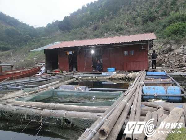 'Chi Dau' o ho Thuy dien Hoa Binh: 'Ban dan cho khong du tien chua benh' hinh anh 1