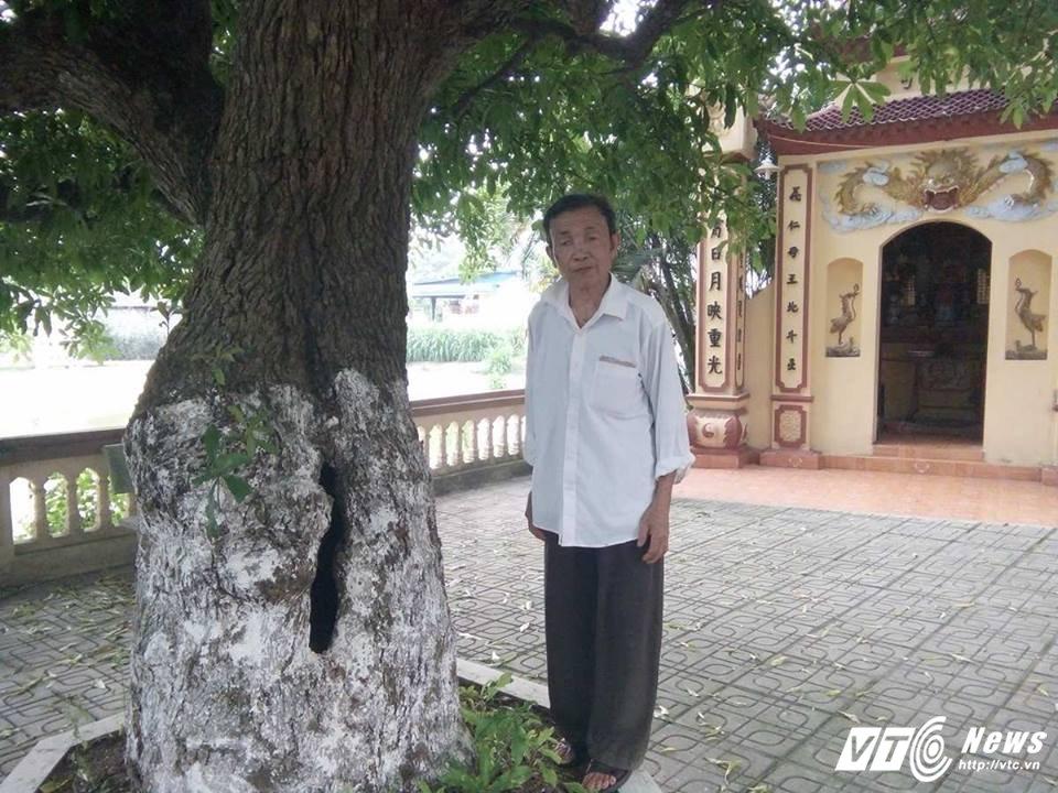 Cay 'bau vat' nghin nam tuoi duoc dai gia tra gia chuc ty dong khong ban o Dong Tam hinh anh 3