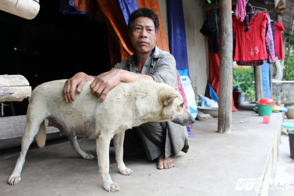 Tan cung khon kho cua me gia hon 90 tuoi va 3 con dien dai o Phu Tho hinh anh 5