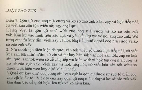 Tac gia de xuat cai cach tieng Viet, 'Luat giao duc' thanh 'Luat zao zuk': 'Co nguoi noi toi rung mo' hinh anh 3