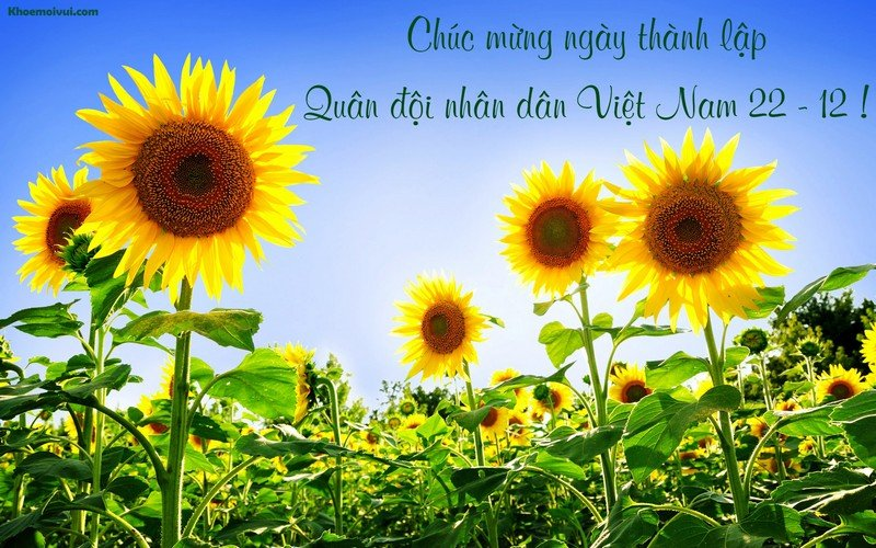 Nhung tam thiep y nghia chuc mung Ngay Quan doi Nhan dan Viet Nam 22/12 hinh anh 7