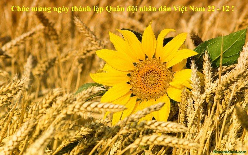 Nhung tam thiep y nghia chuc mung Ngay Quan doi Nhan dan Viet Nam 22/12 hinh anh 1