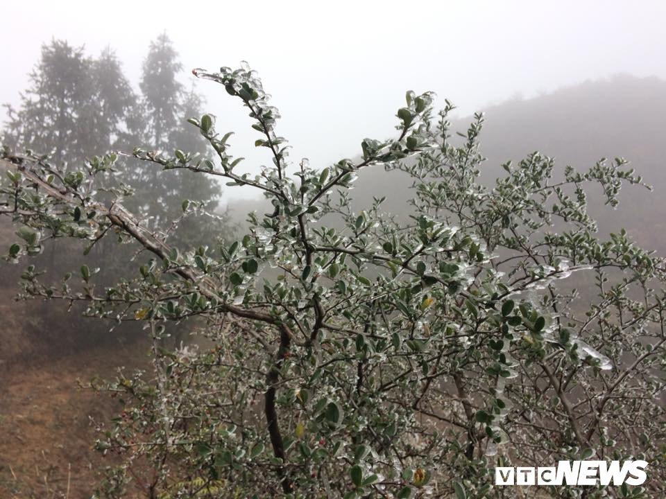 Nhiet do xuong -3°C, xa vung bien Ha Giang chim trong bang gia hinh anh 5
