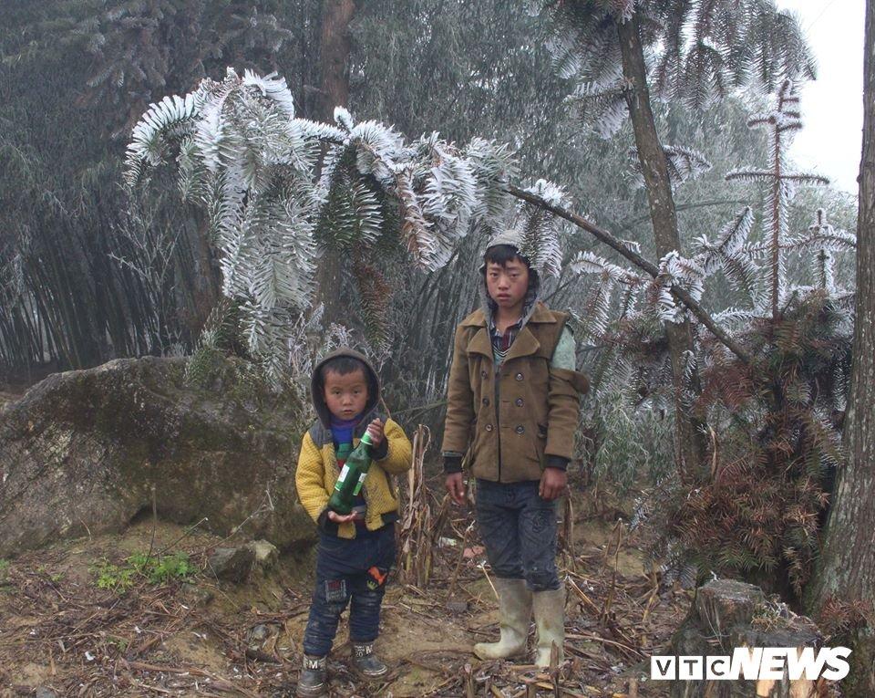 Nhiet do xuong -3°C, xa vung bien Ha Giang chim trong bang gia hinh anh 9