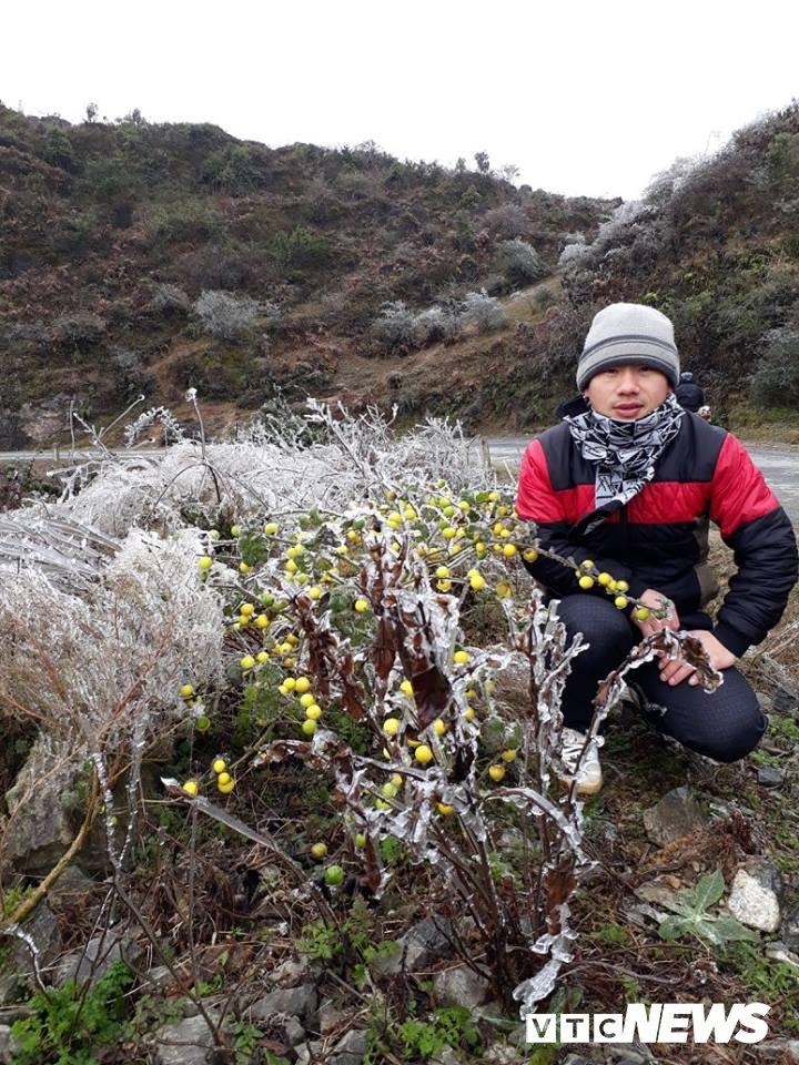 Nhiet do xuong -3°C, xa vung bien Ha Giang chim trong bang gia hinh anh 10