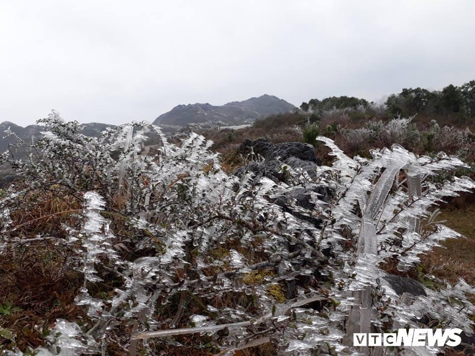 Nhiet do xuong -3°C, xa vung bien Ha Giang chim trong bang gia hinh anh 8