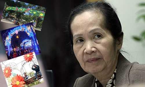 Chuyen gia kinh te Pham Chi Lan: Nguoi Viet lang phi tien dip Tet hinh anh 1