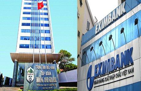 Vi sao co phieu Hoang Anh Gia Lai va Eximbank khong duoc giao dich ky quy? hinh anh 1