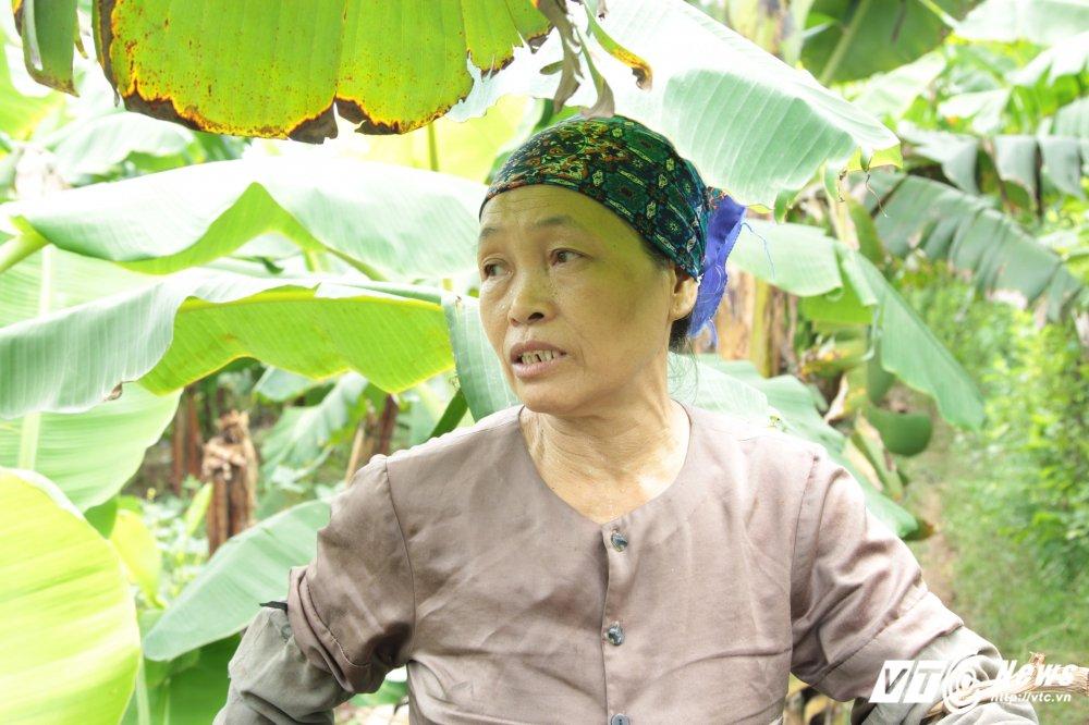 Anh: Chuoi mat ca mua lan gia, dan Khoai Chau nhu ngoi tren lua hinh anh 6