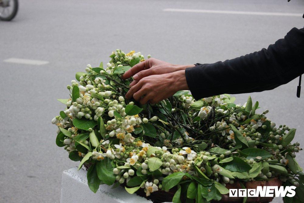 Anh: Ha Noi 'khoac ao' trang tinh khoi nhung ngay hoa buoi xuong pho hinh anh 9
