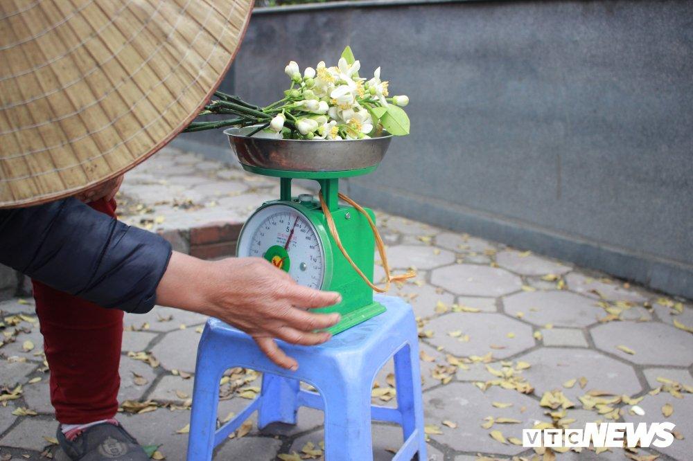 Anh: Ha Noi 'khoac ao' trang tinh khoi nhung ngay hoa buoi xuong pho hinh anh 5