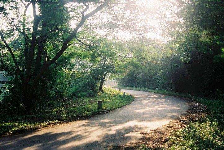Tháng 9 là khoảng thời gian lý tưởng để khám phá Vườn quốc gia Ba Vì