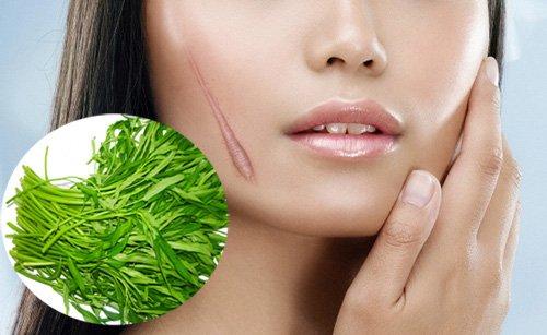 Image result for ăn rau muống gây sẹo lồi