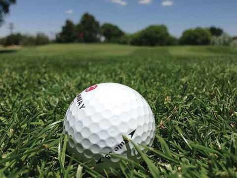 Golf: Mon the thao ren luyen suc khoe cac quy ong nen thu hinh anh 1