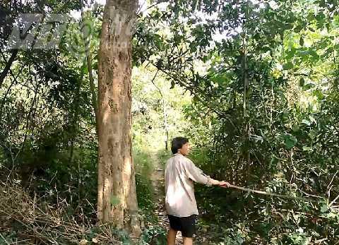 Chuyen la ve hai nguoi phu nu khong chiu lay chong, song canh 'nguoi rung' o Vinh Phuc hinh anh 4