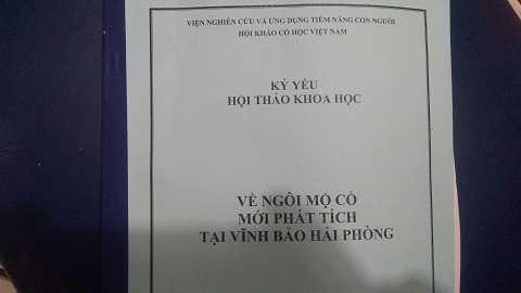 Vu tim mo Trang Trinh bang ngoai cam: Hoi thao khoa hoc hay 'hoi thao me tin'? hinh anh 1