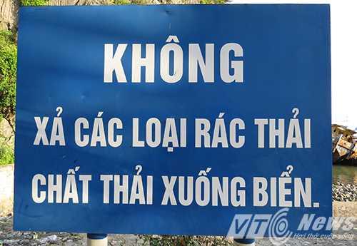 Nuom nuop nguoi 'thach thuc tu than' ben bo vinh Ha Long hinh anh 2