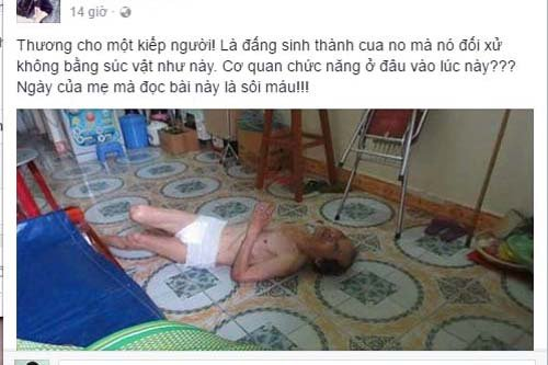 Su that phia sau hinh anh, thong tin to con danh bo tan nhan o Hai Phong hinh anh 1