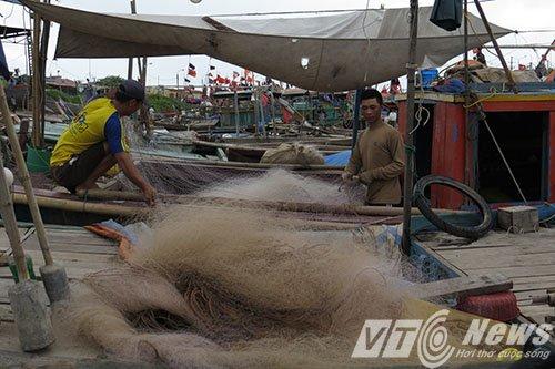 Quang Ninh, Hai Phong, Thai Binh cang minh chong bao so 10 hinh anh 2