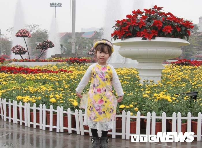 Pho phuong Hai Phong ruc ro don Tet Nguyen dan Mau Tuat hinh anh 9