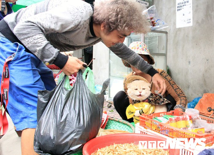 Video: Chu meo ten Cho ngo nghinh 'nhat vinh Bac Bo', di cho tao dang ban hang hinh anh 12