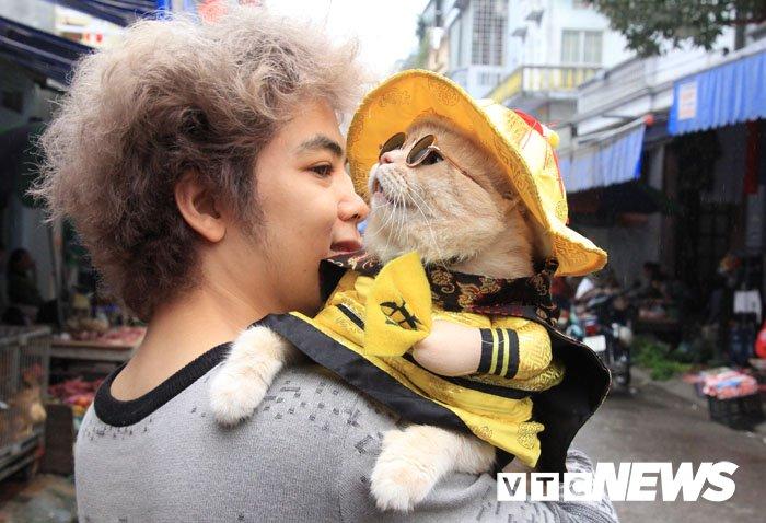 Video: Chu meo ten Cho ngo nghinh 'nhat vinh Bac Bo', di cho tao dang ban hang hinh anh 2