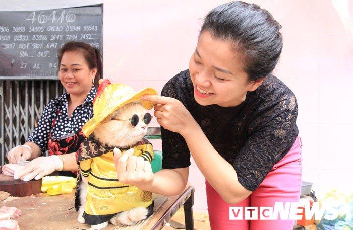 Video: Chu meo ten Cho ngo nghinh 'nhat vinh Bac Bo', di cho tao dang ban hang hinh anh 5