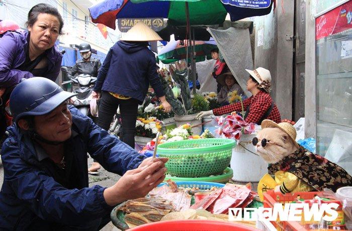 Video: Chu meo ten Cho ngo nghinh 'nhat vinh Bac Bo', di cho tao dang ban hang hinh anh 9