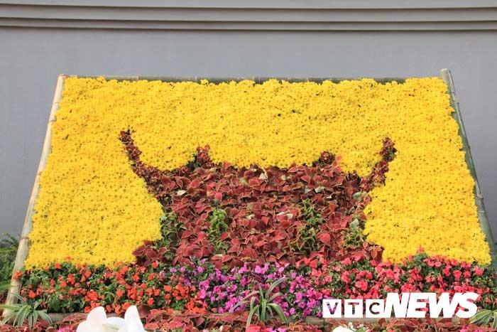 Anh: Chiem nguong hoa anh dao Nhat Ban, mai vang Yen Tu dua sac hinh anh 4