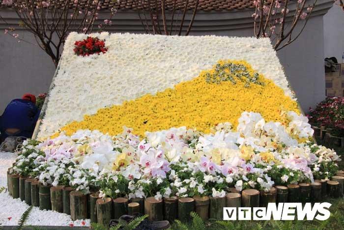 Anh: Chiem nguong hoa anh dao Nhat Ban, mai vang Yen Tu dua sac hinh anh 5